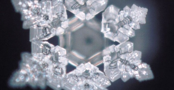 A Message From Masaru Emoto