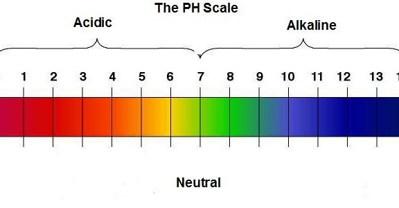 Alkaline Without Alkalinity