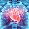 Heart Disease Prevention With H2 (Molecular Hydrogen)