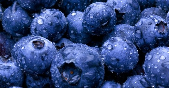 Where Did All The Blueberries Go?