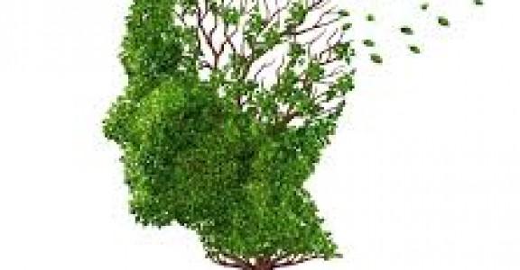 Alzheimer's Prevention With H2 (Molecular Hydrogen)